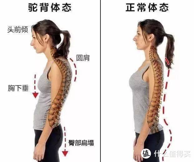 四招get气质少女,改善含胸驼背脖子前倾
