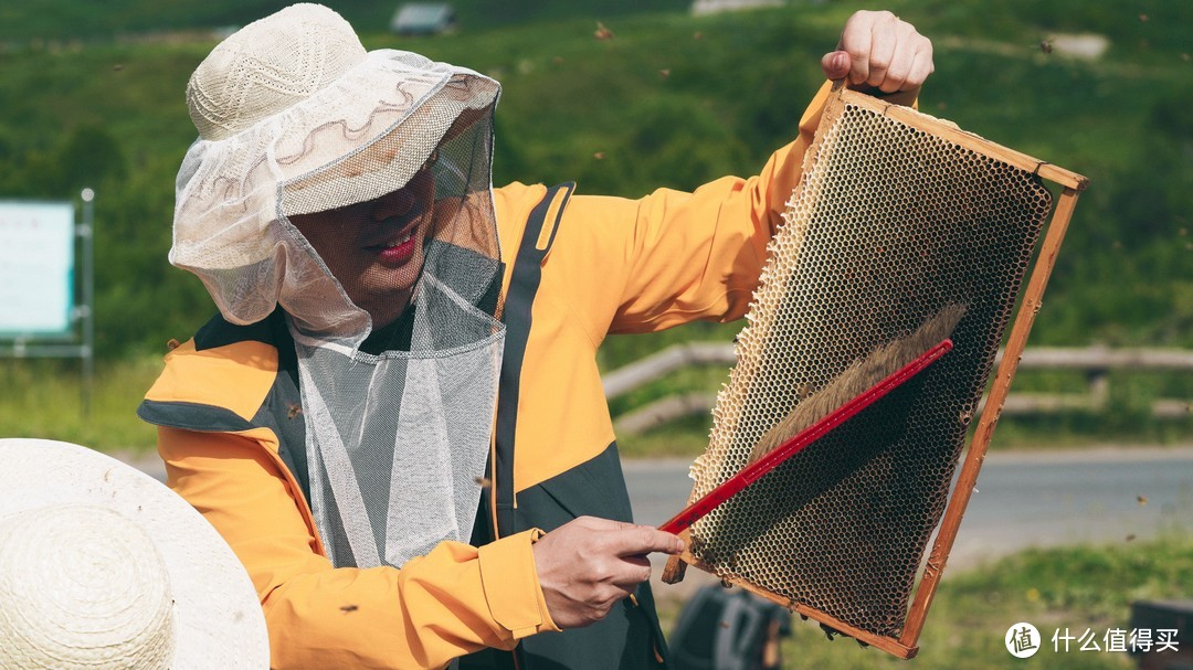 """""""可可托海-喀纳斯""""连游,一天风景民俗寻宝,一天特色养蜂体验"""