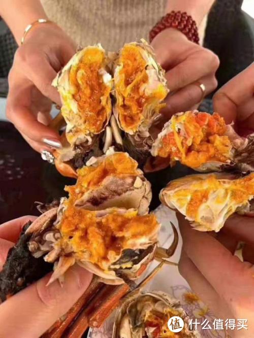 去阳澄湖吃大闸蟹哪家好 终于知道吃大闸蟹非常好的地方