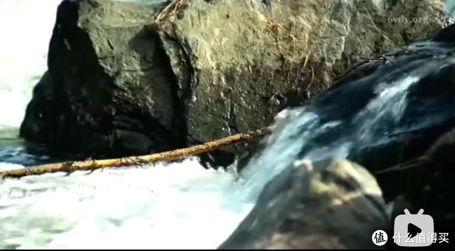 8部水相关纪录片,帮你了解水、使用水、保护水!