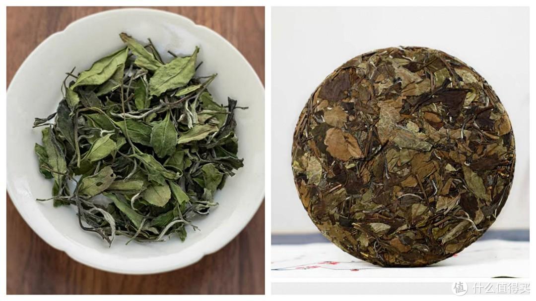 一篇告诉你白茶到底选新茶还是选陈茶