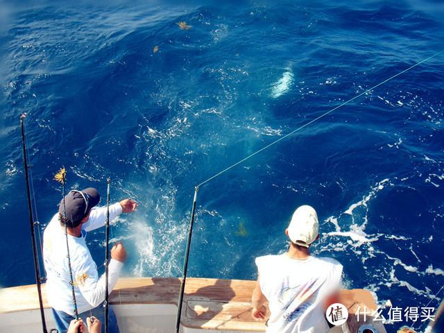 颠覆传统内海垂钓方式,从环境鱼情出发,深度解析飘饵钓独特之处