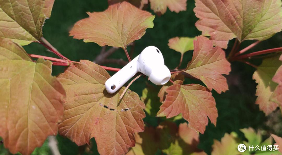 新荣耀第一款TWS蓝牙耳机,36H超强续航表现惊艳,500以内最佳选择