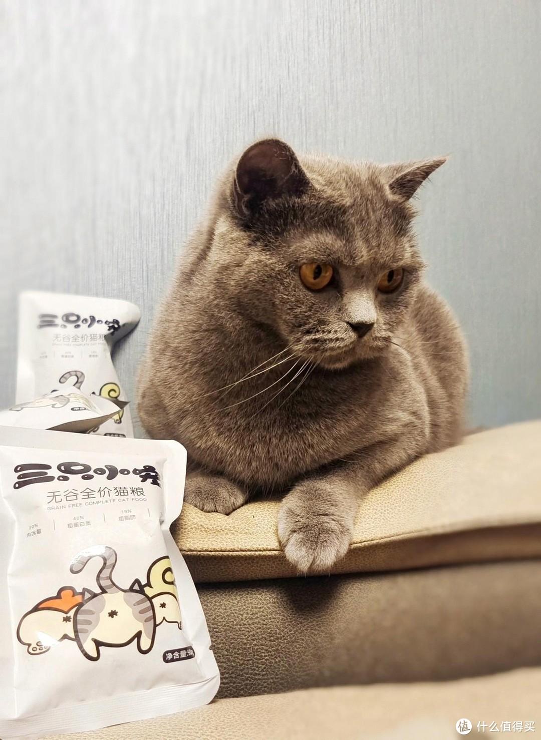 软便怎么办?铲屎官真实测评|三只小宠国产养胃猫粮