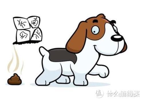 苹果醋也能改善软便情况?狗狗软便大揭秘来啦!