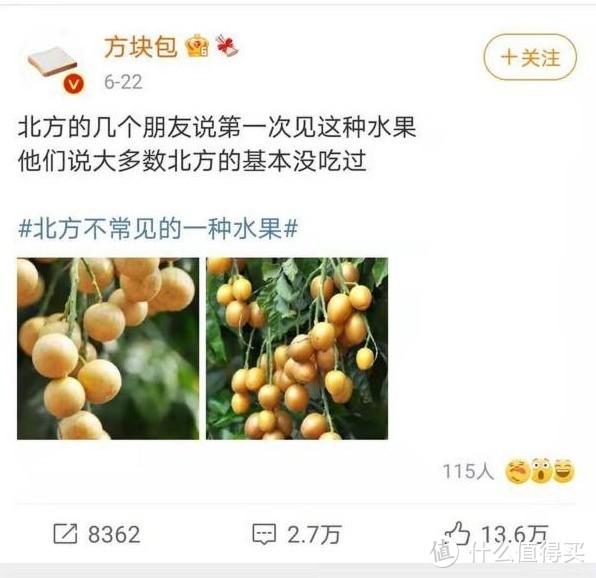 """食物碎片:老广私藏多年的小众水果,拿来吧你!水果界的""""藿香正气水""""出道即巅峰。"""