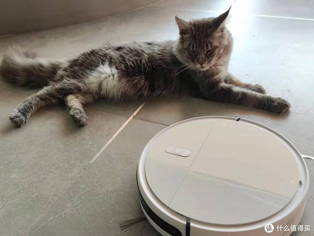 你没看错,现在养宠物家庭清洁都用它了——睛野N8K扫地机