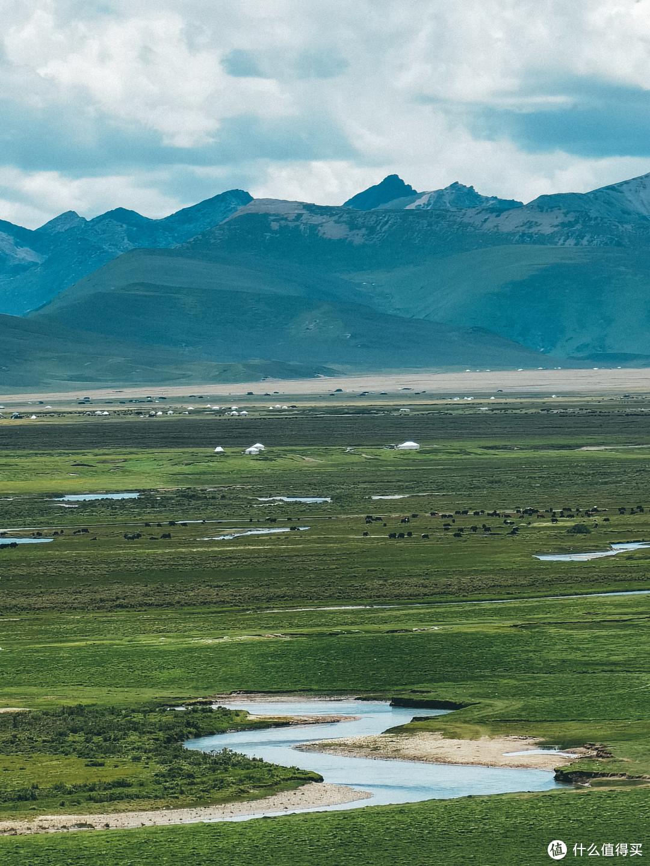 美丽震撼的毛垭大草原-有亿万朵花