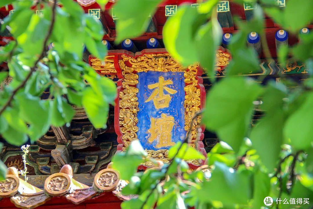 杏坛是教育圣地的代名词。图为曲阜孔庙。©️图虫创意