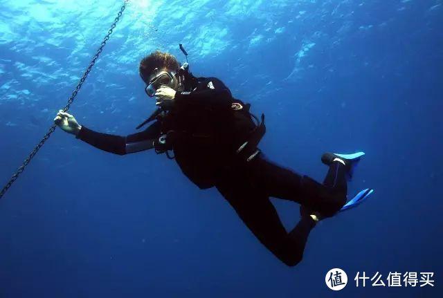 3小时就能考自由潜一星,和鱼的亲密接触不再是梦想