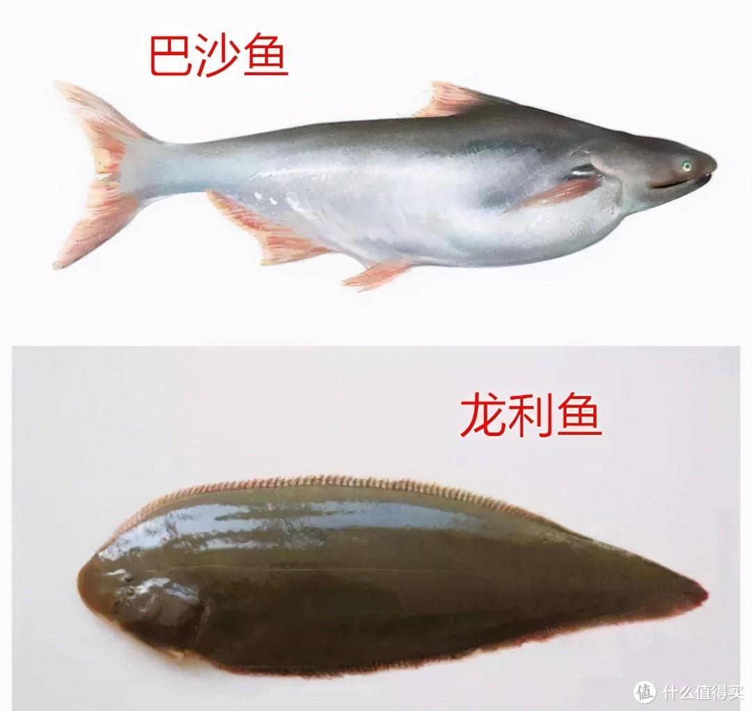 菜市场里这几种鱼,人工无法养殖,鲜美又营养,内行人常吃