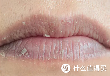 怎么选择秋冬季的润唇膏?
