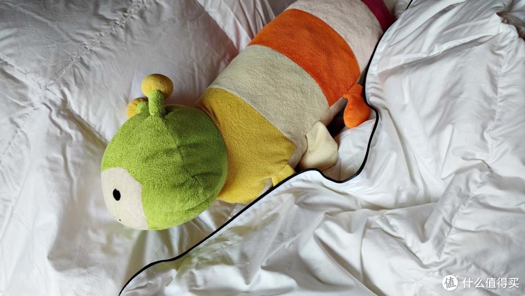 睡眠质量差?教你如何睡个好觉