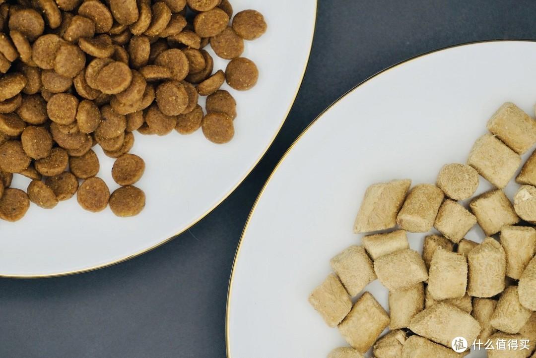 左:主食猫粮  右:冻干