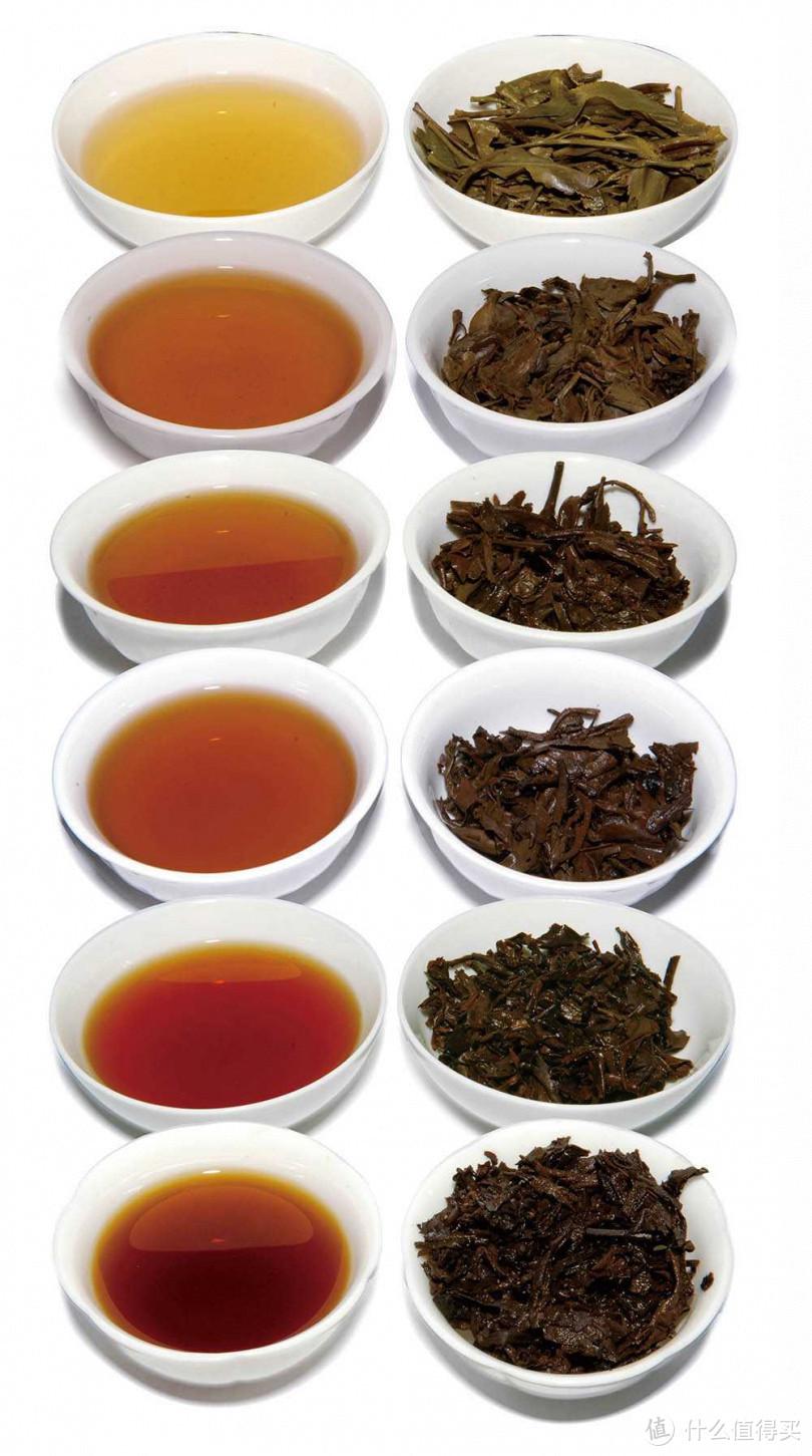 普洱生茶经过岁月陈放自然发酵后,会呈现各种不同的色泽变化,图最上为10年生茶,最下方的生普则有70年历史。