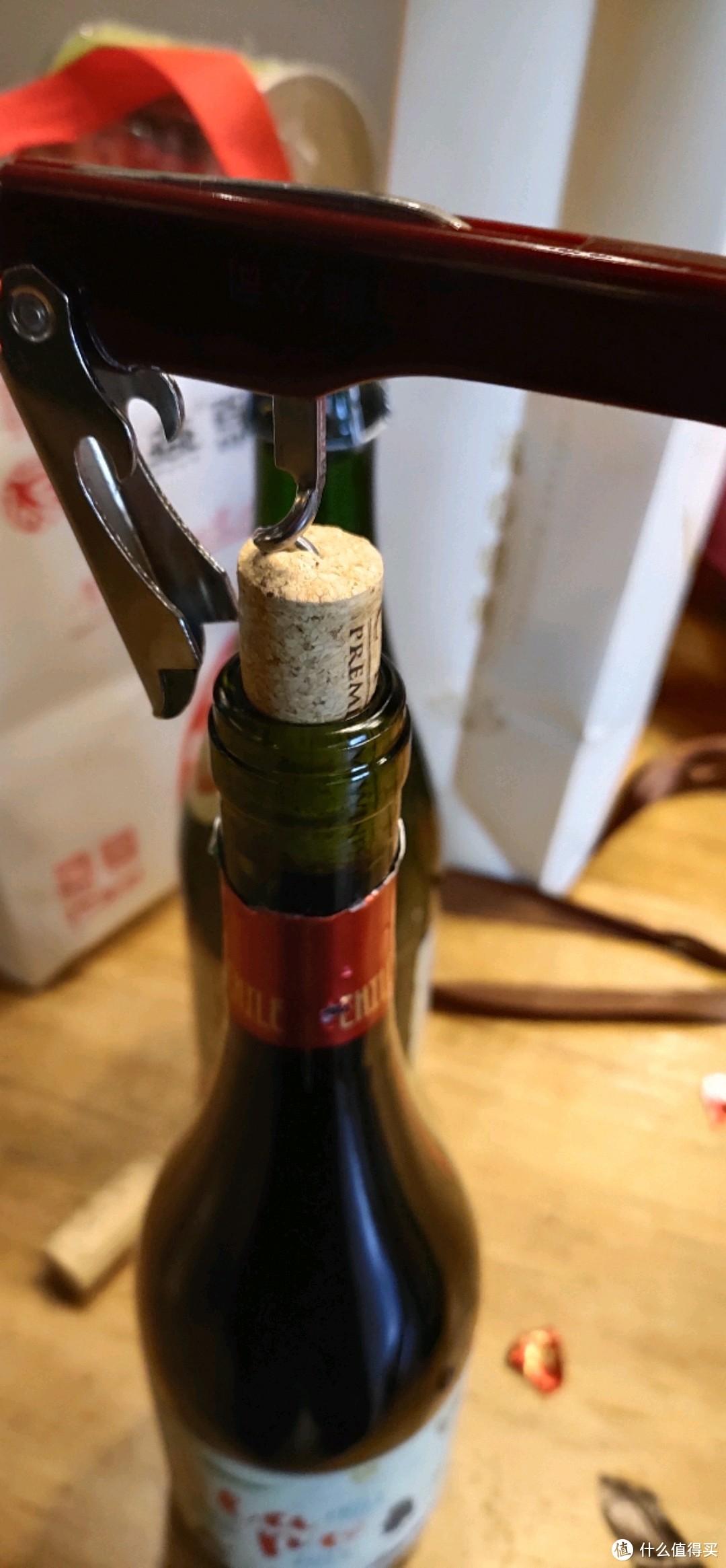 对入门更友好?来自新世界的智利ola po单一梅洛红葡萄酒酒桌实战试音