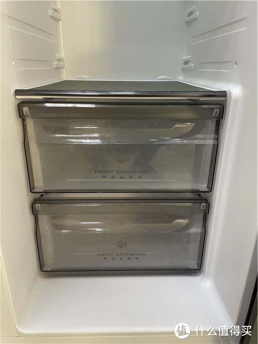 600升容量双门冰箱售价不到3000元 这种便宜真的可以占吗?