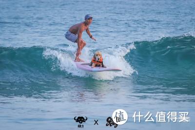 狗狗盛世!狗狗冲浪大赛来啦~和狗狗一起冲浪要准备什么?