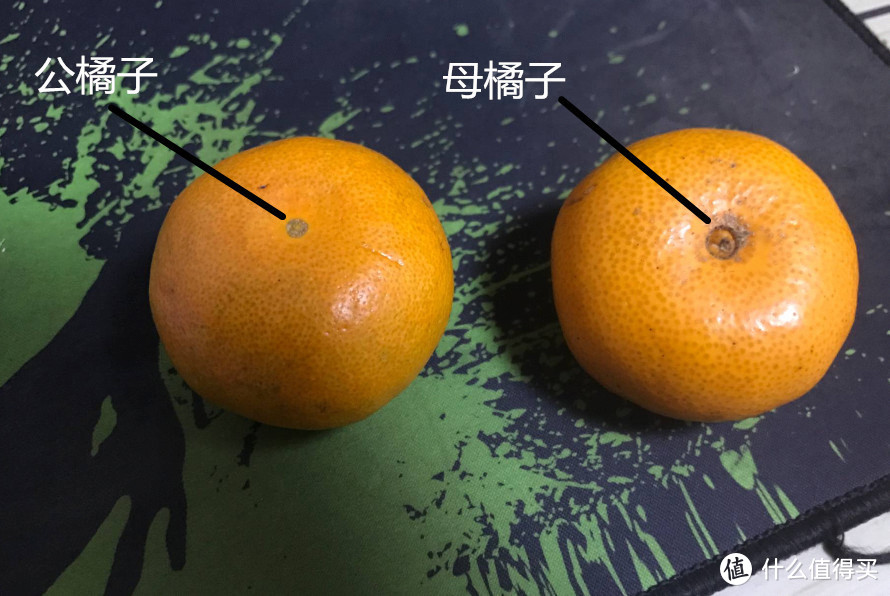 耙耙柑、沃柑、爱媛...转眼又到柑橘季!这份中国柑橘地图请收好!